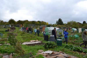 Through the allotments we go!