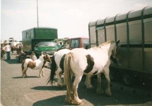 Brigg Fair3